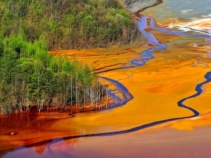 Xử lý ô nhiễm công nghiệp để cứu đa dạng sinh học